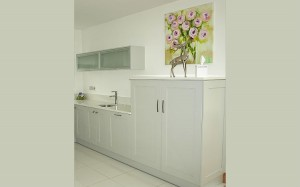 Customer Testimonial Kitchen Genasmole 3